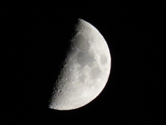 上弦の月@夜