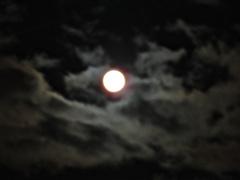 満月雲隠れ