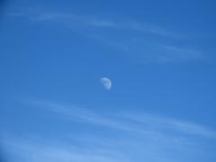 今日の空と上弦の月