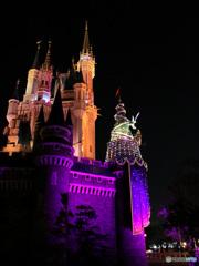 2008年秋 夜のシンデレラ城  905