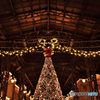2015年ワールドバザール・クリスマス飾り  543