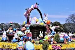 2011年春のTDL風景  663  イースターうさぎ