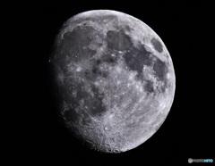 今宵の月(月齢11.3)
