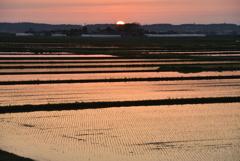 瑞穂の国 庄内平野の夕暮