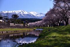 2021-4-11 中山公園 リベンジ