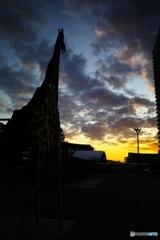 夕陽に 2