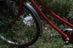 オールドレンズで 白い百日紅と赤い自転車