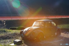 オールドレンズで VW 2