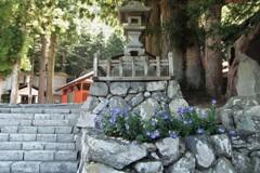 奈良井宿 2012 ②
