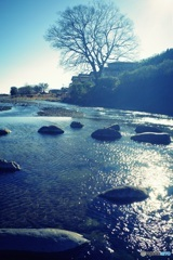 水無川に水 2