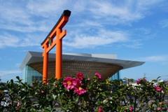 富士山世界遺産センター 横の山茶花