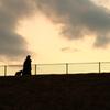 愛犬ドリムとのお散歩