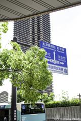 大阪シティーバスも行く、行く。。。