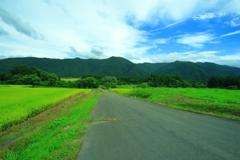 福島 田舎道