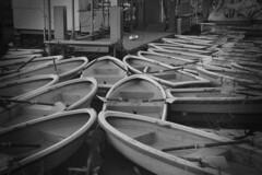 井の頭公園 ボート乗り場