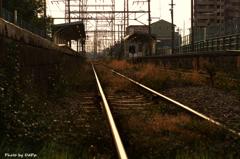 黄昏の終着駅