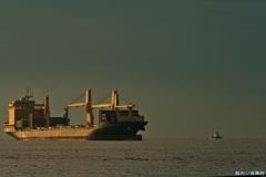 朝陽の着港