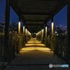 日の灯った公園の廊下
