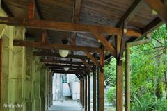 松山クリエイティブパーク散歩