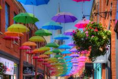 虹のパラソル