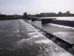 多摩川の二ヶ領堰