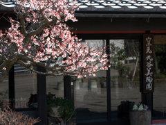 加賀-九谷美陶園