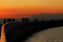 富士見桟橋