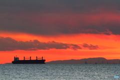 東京湾の船