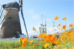 オランダ風車Ⅲ