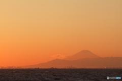千葉からの夕富士