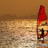 In the golden sea