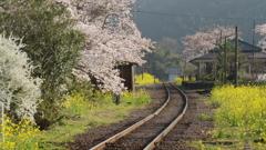 春の高滝駅