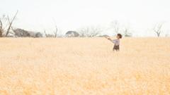 牧草畑と少年