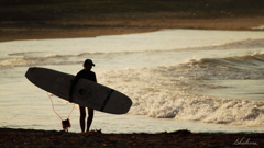 Evening surfer girl