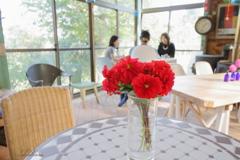 赤いダリアのあるテーブル