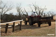 牧場のトラクターⅢ