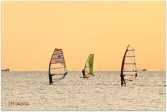 Evening sailingⅢ
