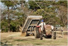 牧場のトラクターⅡ