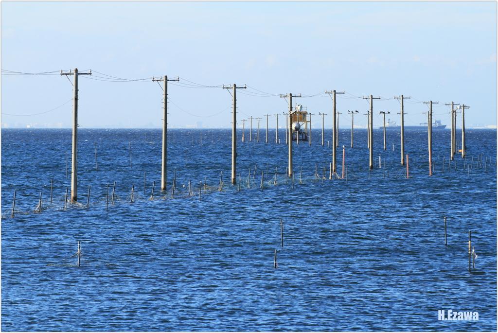 青い海と電柱Ⅱ