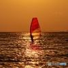 Golden Sea2