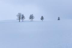 薄青い雪景色