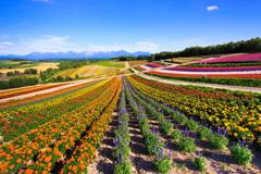 虹色の大地