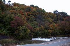 2010猊鼻渓秋2