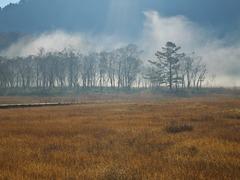 朝霧の尾瀬ヶ原ー朝日に浮かぶ2