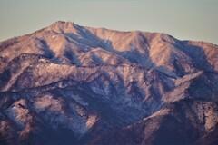朝日を浴びる大山(阿夫利山)