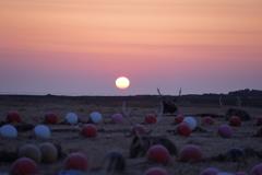 野付半島の夜明け