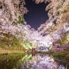 桜と水の競演 14mmバージョン