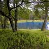 長野の青い池