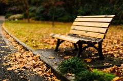 誰も座らないベンチ