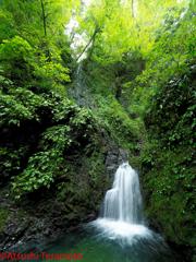 金剛の滝(下段:雌滝)通常撮影
